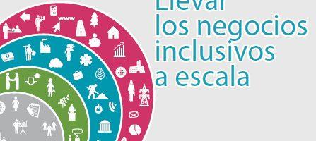 Llevar los negocios inclusivos a escala
