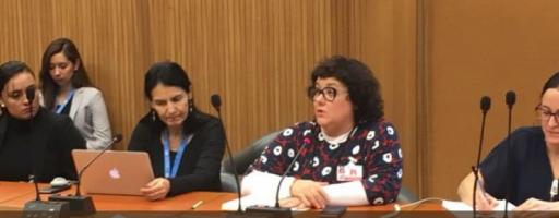 Panel hace un balance sobre la implementación de los Principios Rectores en América Latina