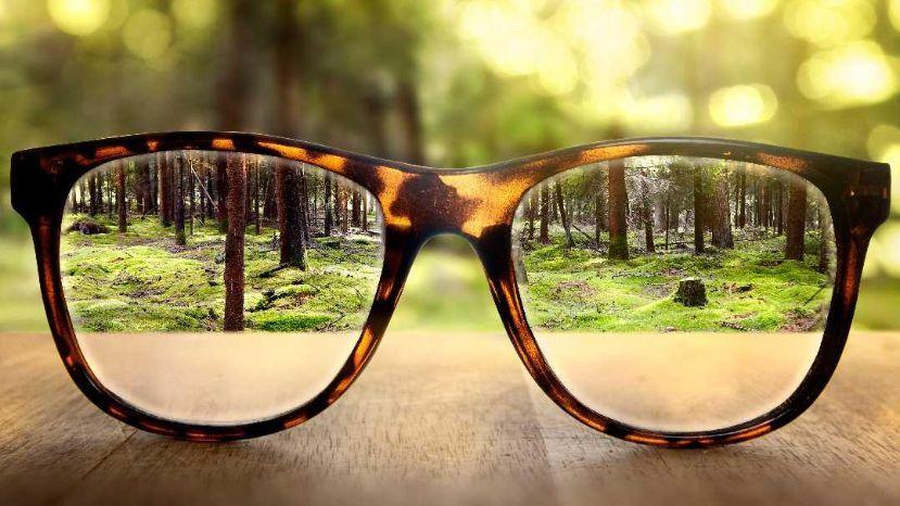 Sustentabilidad: los logros de 2018 y las metas de 2019