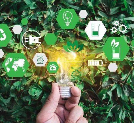 ODS: qué harán las empresas durante 2019