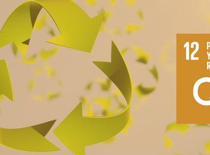 #ODS 12: Producción y consumo responsables