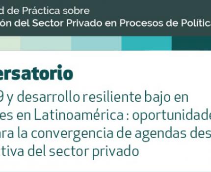 Oportunidades y desafíos para la convergencia de las agendas de recuperación post COVID-19 y de desarrollo resiliente bajo en emisiones