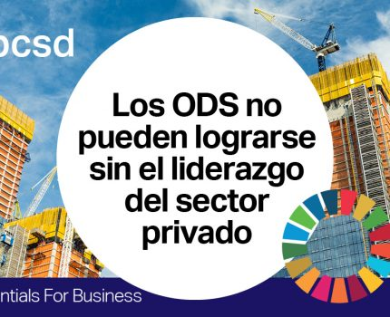 ´SDG Essentials for Business´ Plataforma online de aprendizaje sobre los ODS