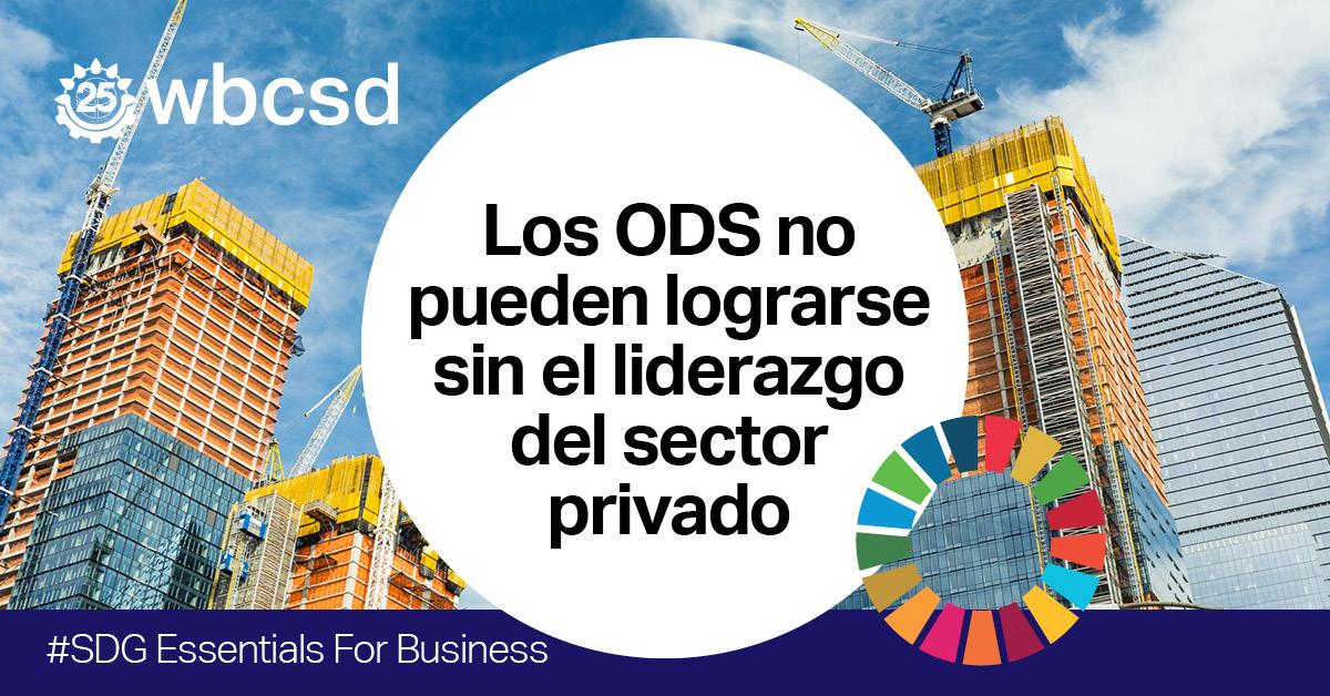 ´SDG Essentials for Business´ Plataforma online de aprendizaje sobre los ODS