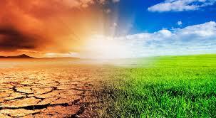 """Programa """"Acción climática"""": gestión de riesgos y oportunidades del cambio climático"""