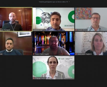 Cabandié dialogó con referentes del Consejo Empresario Argentino para el Desarrollo Sostenible
