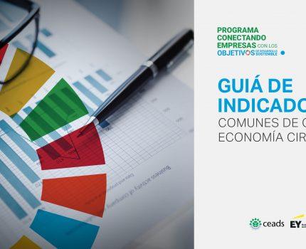 Guía de Indicadores Comunes de ODS y Economía Circular